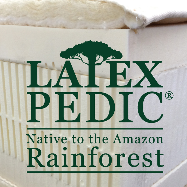 organic natural latex: native to the amazon rainforest