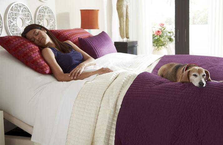 highest quality Adjustable-Beds